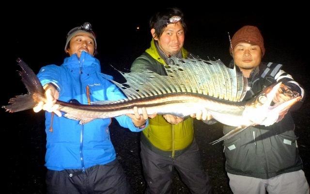 水っぽい深海魚といえばこのミズウオ。