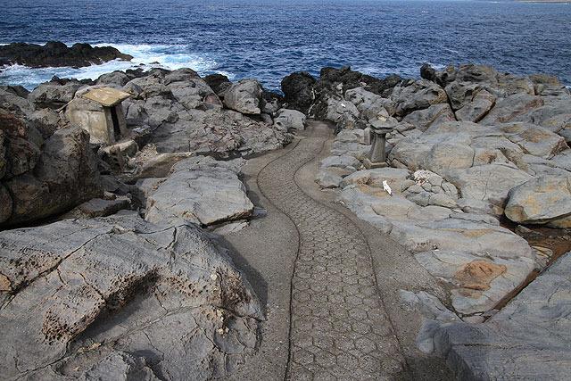 岩場に道がある。