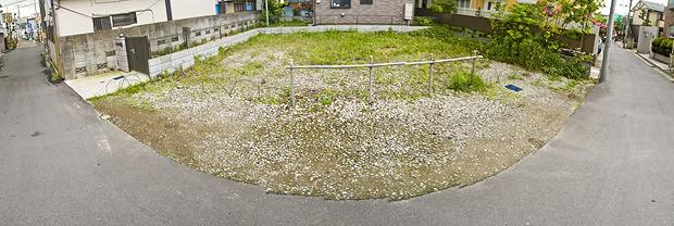 ザ・空き地って感じの空き地。すごくいい。うまく説明できないけど、すごーくいい。でも土管はない。
