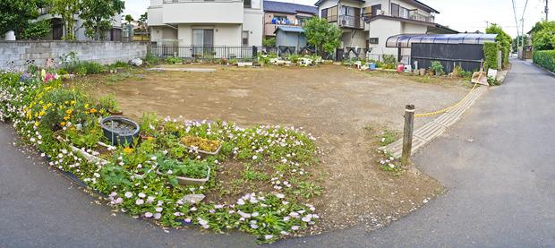 花が咲きまくっていた。子供の遊び場と言うよりは、どうも近所のお母様方が活発に利用しているようだった。