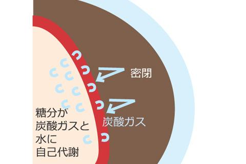 イチゴは呼吸してて密閉されてるから炭酸ガスが充満する