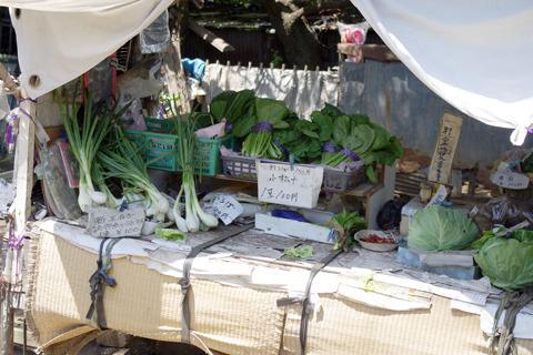 と思えば無人の野菜直売所。