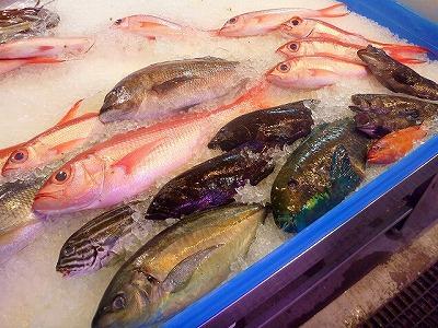 場内には沖縄らしく色とりどりの魚が並ぶ。