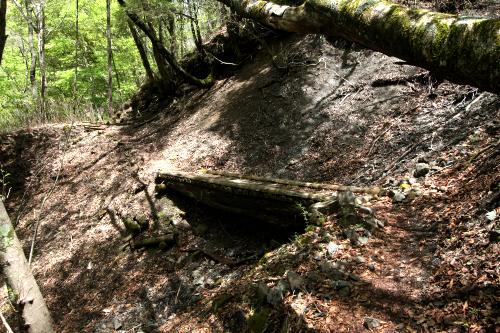 途中に架かる木橋は、踏むと腐ったような感触があったが