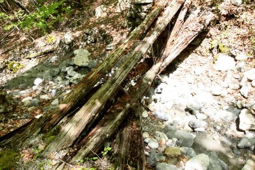 峠の北側は、木橋が腐り落ちているなど、結構荒れている