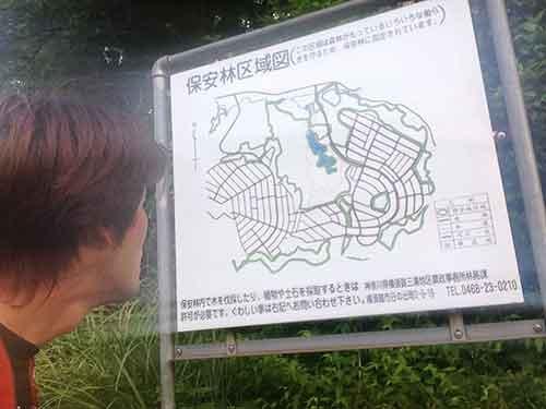 地図を読むのもトレラン。