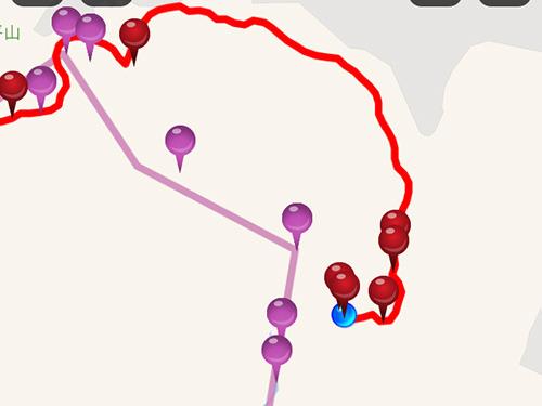 紫があらかじめ設定していたルートで赤が実際に通った道。ものすごい迷走したあげく正しい道まで戻ってきた時の感動の記録である。