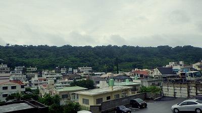 沖縄在住の頃は本島中南部の森でよく見かけていた。