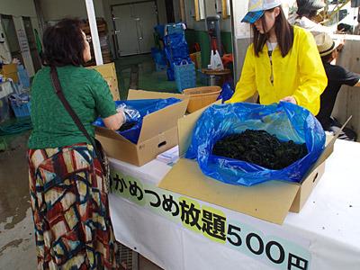 そして三陸の海藻といえばワカメである。袋に詰め放題で500円!