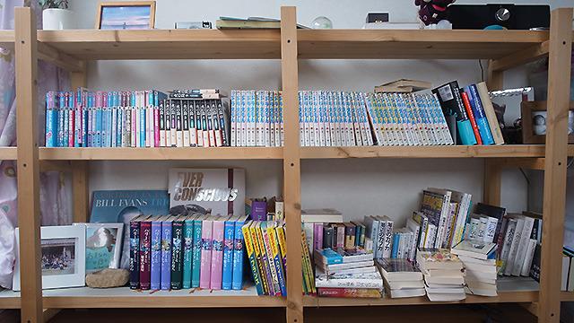 わが家の本棚。