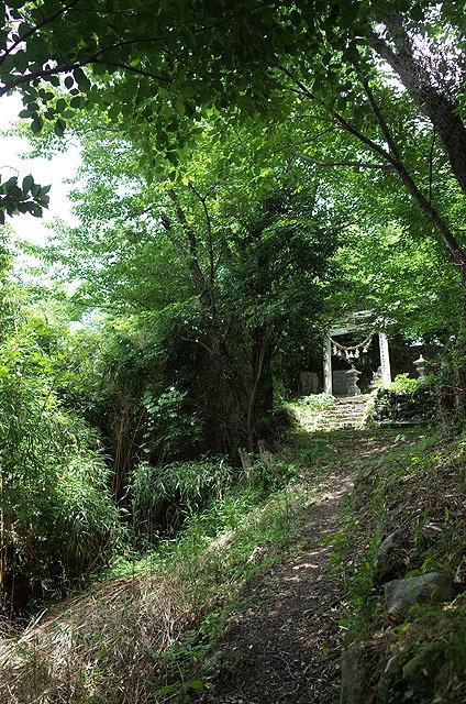 頂上付近には祠がある。