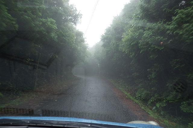 登り口へと向かう道路。