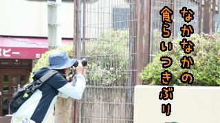 クールジャパン!