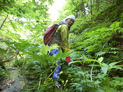 山登りに続いては川登り。長靴を履いてこいと言われていたのはこのためか。