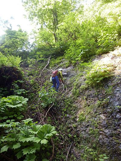 落ちたら骨の一本くらいは確実に折れそうな崖を登りはじめた。