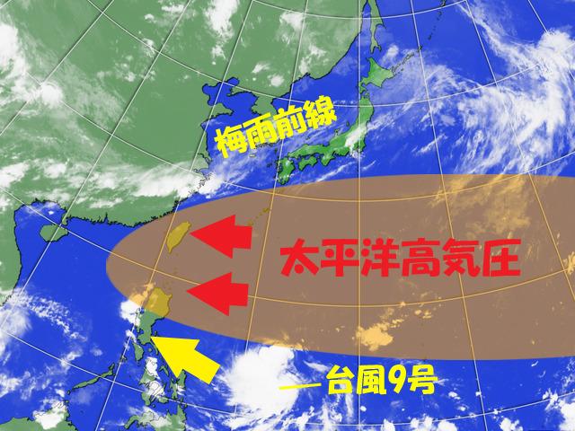 台風9号は西へ進み、梅雨前線が日本付近に微妙に残る。こうなりそう。。
