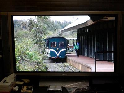 「世界の車窓から」に出てきそうな列車。S子さんは列車内で酒を飲む「飲み鉄」だそうです。