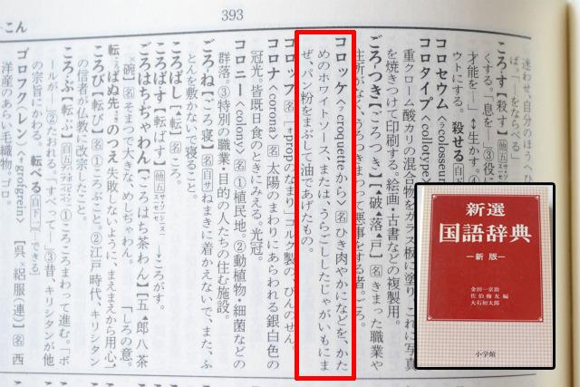 1982年版の『新選国語辞典』初版のころからホワイトソースの記述があるかどうかは不明