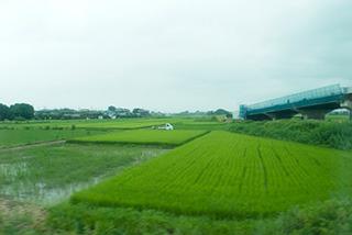 美しい田園風景を眺めながら