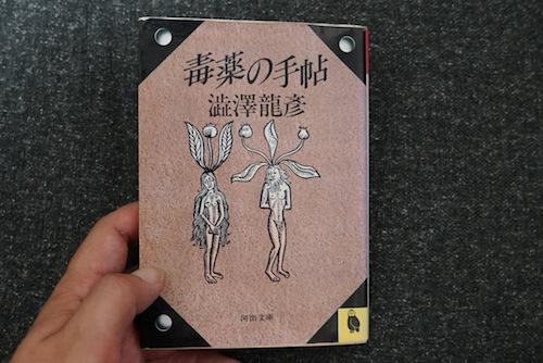 河出文庫版 澁澤龍彦「毒薬の手帖」の表紙を飾るのもマンドラゴラ