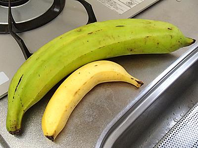 こちらはフィリピン産の調理用バナナ「ツンドクバナナ」。池袋の東武デパートで購入。手前が通常のバナナ。かなりデカい。そして色々な料理に使えます。