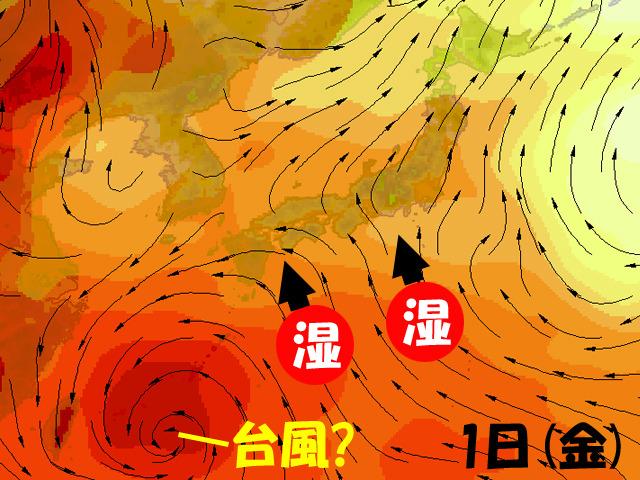 オレンジ色が濃い所ほど、蒸し暑い空気。矢印は風。今週後半は、蒸し暑くなりそう。ちなみに、台風に「?」を付けているのは、発生してないのに台風の場所まで言い切ると、気象庁から電話がくるため。予防線。
