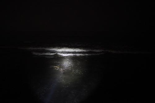 懐中電灯は必須。音のする方を照らすと波がすぐそばに見える。