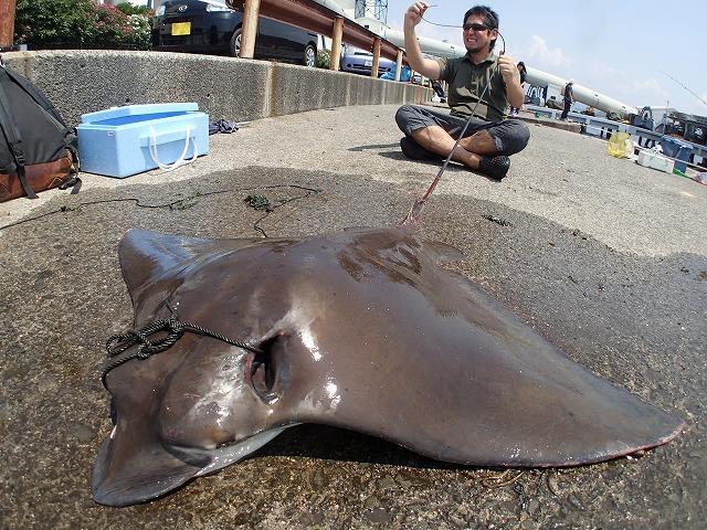 2m60cmの魚釣ったよ!って言ったらみんなびっくりするだろうな。でも絶対ずるいって言われるだろうな。