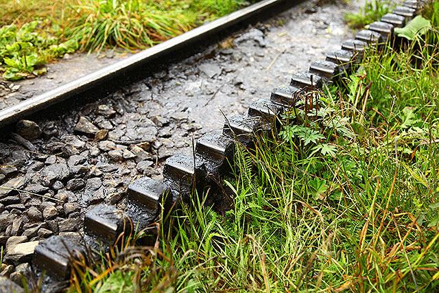 登山電車は結構な斜度を登るので、線路の間に歯車がある。