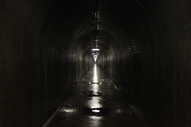 アーチダムが刺さっている岩盤の中を通るトンネル
