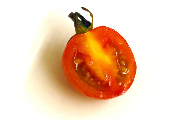 プチトマトの断面です。