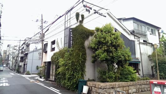 萌。台風のためお休みだった。