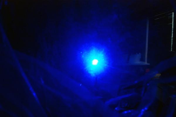 プロジェクターの青い光は、深海から見上げる月のように美しかった