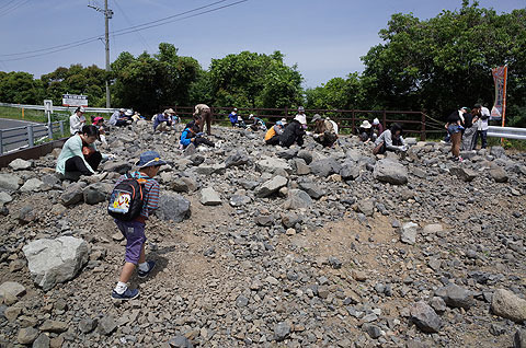 天草の御所浦(ごしょうら)は化石で有名な島。そこで化石採集体験をした。
