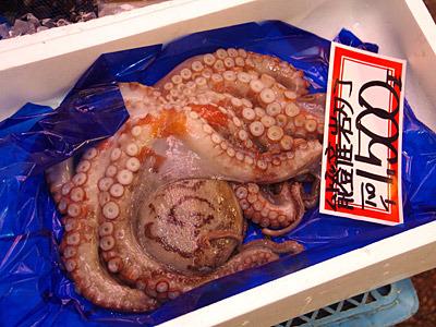 能登のタコが1500円!これは買いだ!いや、買えない!くやしい!