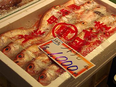 最近は九州方面からたくさん流れてくるようで、それなら私でも買えそうな値段である。こちらは土佐のカツオならぬノドグロ。