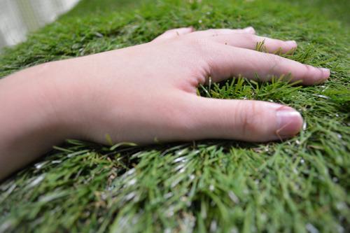 画像からは一切伝わってこないとおもいますが、アロマ効果で非常に草っぽい香りもしていて