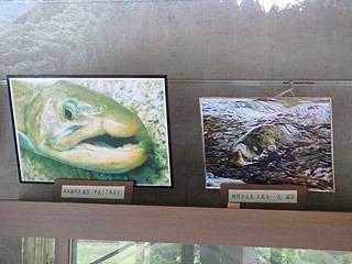 口の形に特徴があるらしく、それっぽい写真もいくつか残っている。