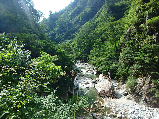 写真だとまったく伝わらないんだけれど、緑濃き森の谷間に流れる渓流が美しいのですよ。花崗岩なのか白い岩肌が素敵。