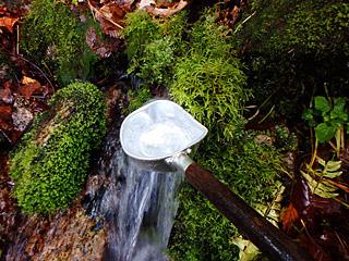 ちょっと喉が渇いたなと思う場所には、美味しい湧水があるという素晴らしい登山道。