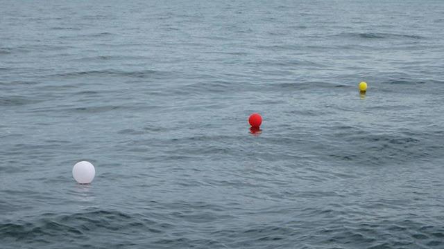 3つの仕掛けが海面に漂う。メルヘンな光景だが、狙っているのはサメ。