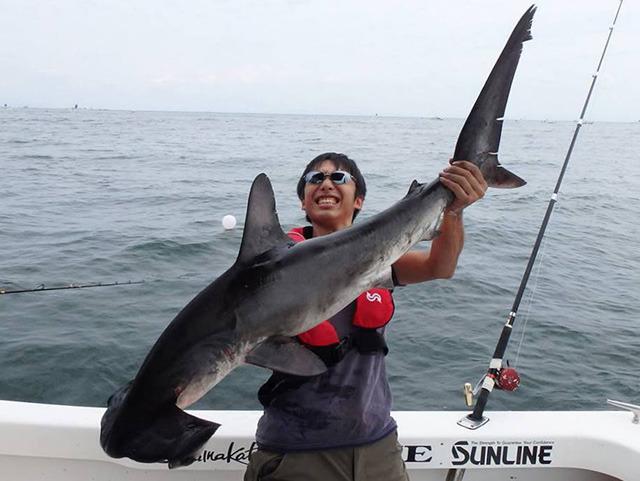 イカすねー!サメも釣り人も!