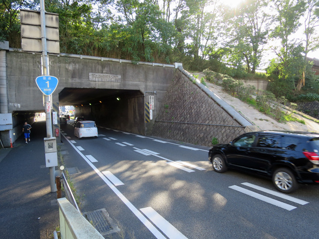東海道線のに負けず劣らず立派なトンネル