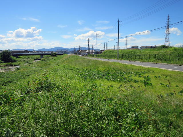 左を流れるのが現在の草津川。以前はこの前を横切るように右に流れていたようだ