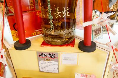 こちらは珍しい銀ハブのハブ酒。南都酒造所では珍しいハブでハブ酒を作ってみたいらしいが、大体併設されてるハブ博物公園で展示物になってしまうらしい。