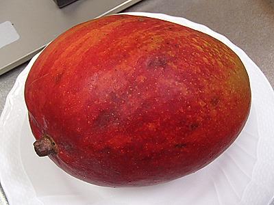 マンゴー。トロピカルな甘さがおいしい。焼くとどうなる?