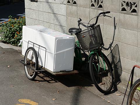 緑の普通の自転車にスチロール箱。魚関係の仕事なんだろうか