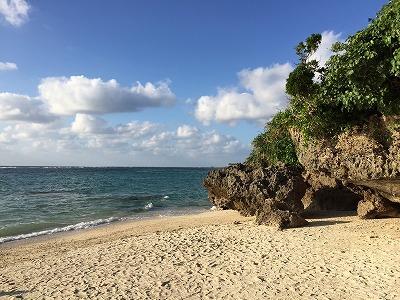 9月が終わるというのに沖縄は暑い。秋の味覚であるシマサルナシがこんな気候で実るのか?