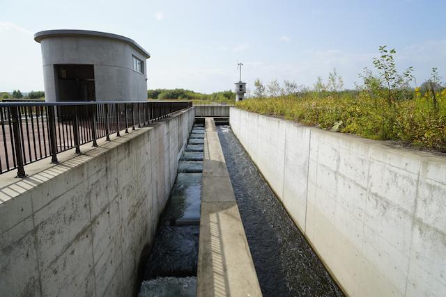 堰の横を上流方面に伸びる魚道。