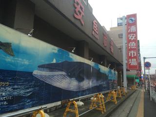 浦安魚市場へ。